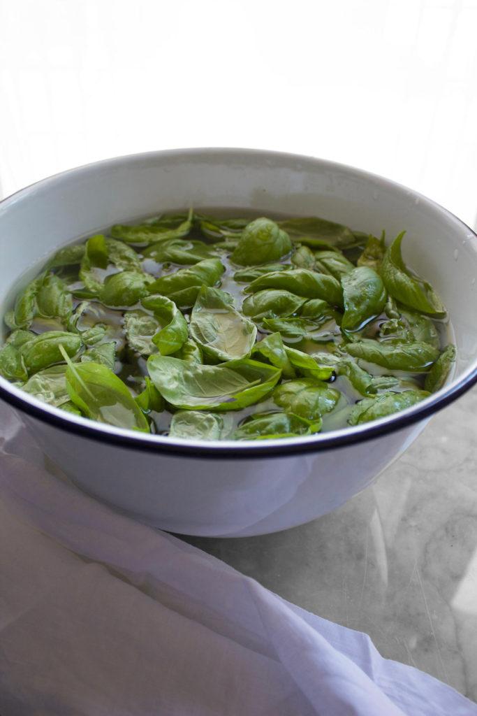 Lavare e asciugare le foglie di basilico